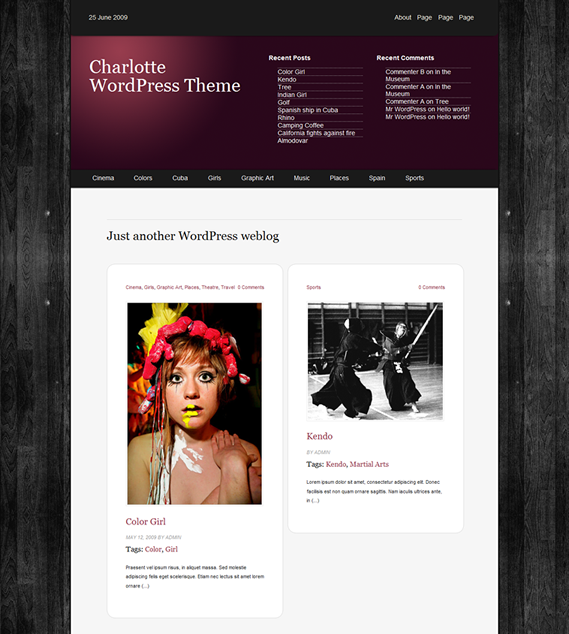 Charlotte-WordPress-Theme1